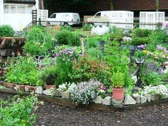 Davie Street Garden