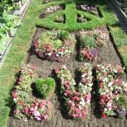 Nelson Park Community Garden