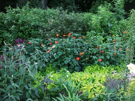 Assiniboine Park English Garden