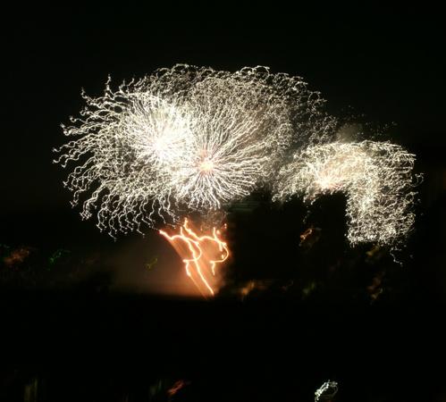 Team Japan Fireworks 2014