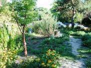MacLean Park