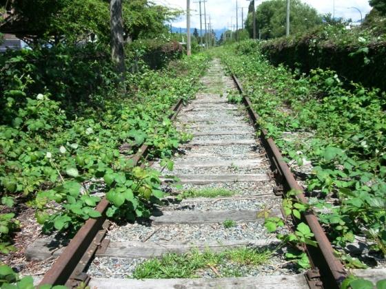 CP Rail Arbutus Corridor